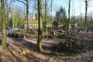 Kreiselternrat im Naturschutzhof Wittmunder Wald